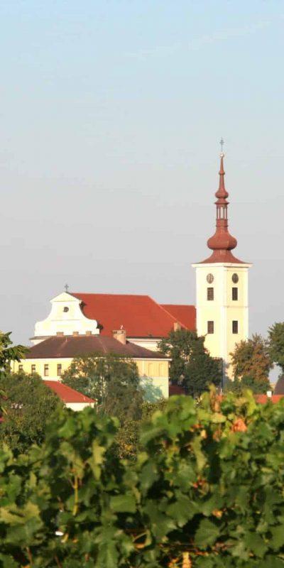 Kirchturm Hohenruppersdorf - Wurzeln Stefan Pratsch